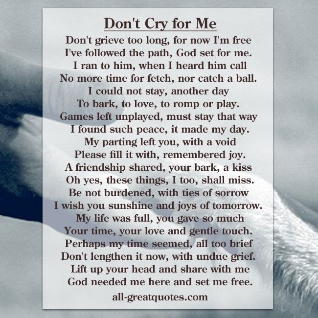 Don't Cry for Me Pet Poem