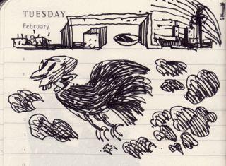 Arpia maschio. Rarissimo esemplare rinvenuto nella bassa padana a metà inverno poco prima di carnevale. Penna su agenda moleskine. 2014.