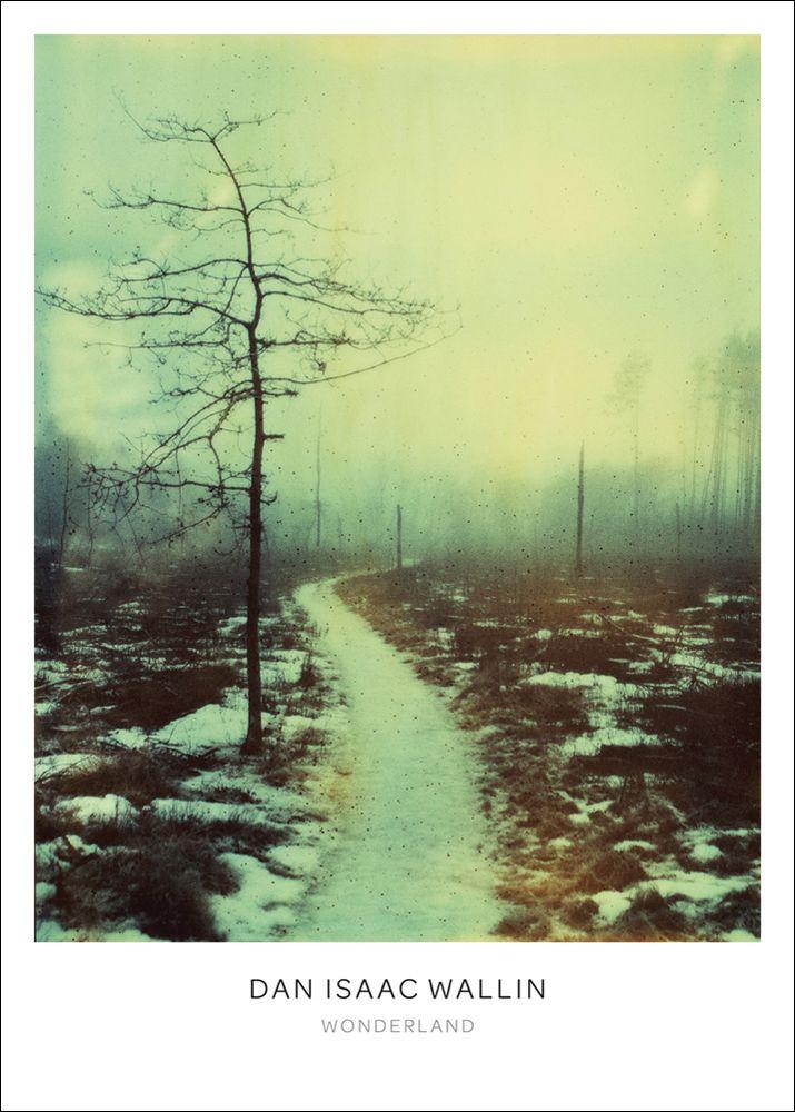 Wonderland poster – 50x70 från Dan Isaac Wallin hos ConfidentLiving.se