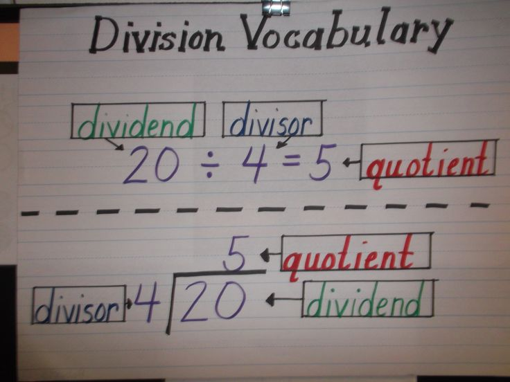 Division Vocabulary Anchor Chart