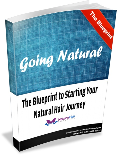 106 best The Best Natural Hair Books, Guides, and Literatures images - copy blueprint decoded full