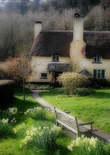Daffodil cottage English village