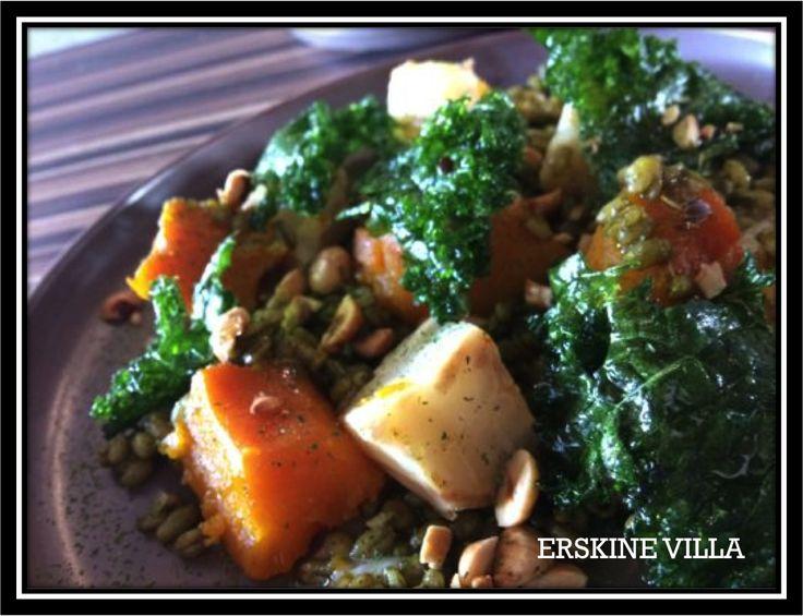 Salt bake Pumpkin and Celeriac, fried Kale, Farro, roast Hazelnut, Vin Cotto