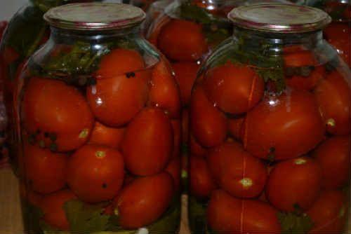 Консервирование помидоров на зиму: очень вкусные рецепты без стерилизации, без уксуса, половинками, с баклажанами. Фаршированные зеленые помидоры в ведре