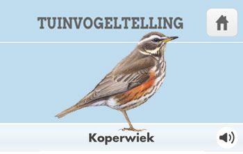Gratis app om de tuinvogels makkelijker te herkennen.