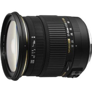 Amazon.com: Sigma 17-50mm f/2.8 EX DC OS HSM FLD Large Aperture Standard Zoom Lens for Nikon Digital DSLR Camera: Camera & Photo