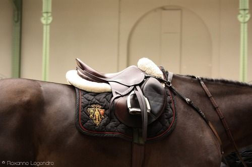 Gucci equestrian speaks to me on a deep emotional level