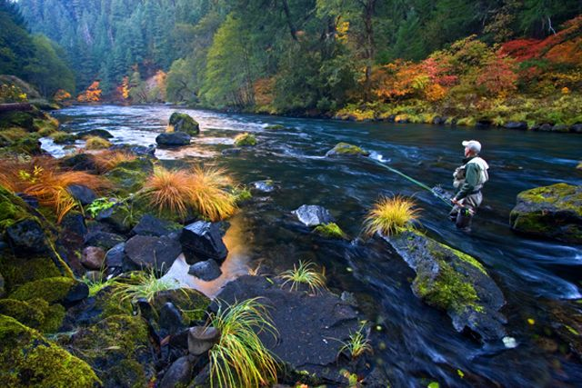 The North Umpqua River– Oregon fly fishing trip | Fly Water Travel
