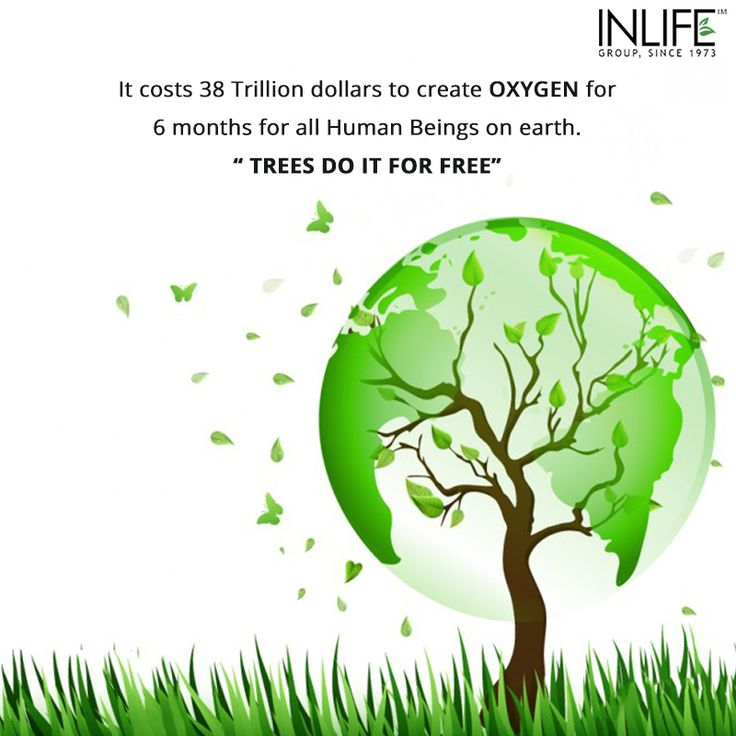 What we're doing for the trees is the reflection of what we're doing to ourselves and one another.. Save trees so you still can breathe! #WorldEnvironmentDay