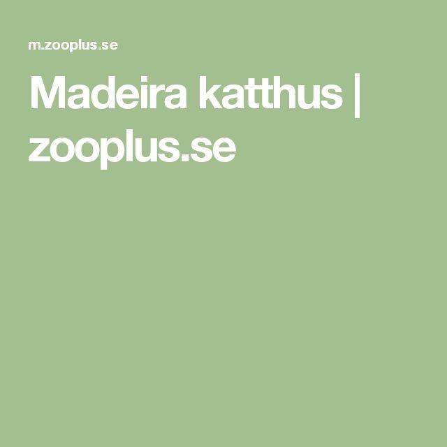 Madeira katthus | zooplus.se