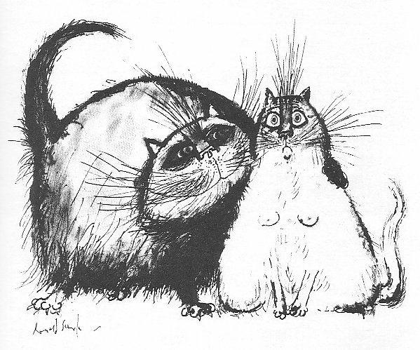 Надписями алабай, прикольный рисунок кошки