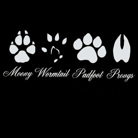 Harry Potter, Moony , wormtail, padfoot, and prongs tee