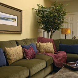 Traditional Family Room Olive Green Couches Design, Pictures, Remodel, Decor and Ideas - page 5