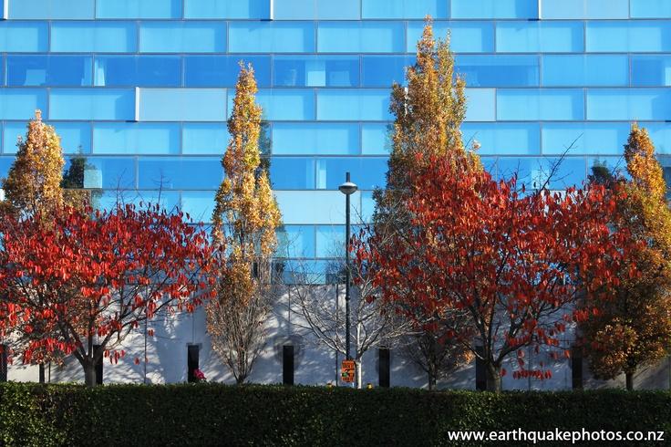 ACC Building - Oxford Terrace