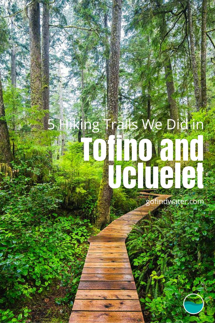 Doing some hiking in Tofino or Ucluelet? Check out which ones we did and save yourself the trouble of choosing the right ones.