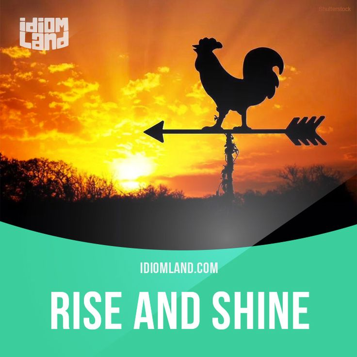 Idiom of the day: Rise and shine.  Meaning: Get out of bed and be lively and energetic.  Example: Come on, children! Rise and shine! We're going to the beach.