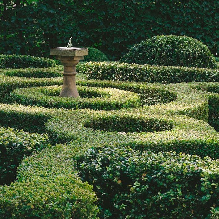 Serene Garden, Japanese Garden Green In The Landscape, Serene Green, Green    The Restful Color, Serenity In The Garden