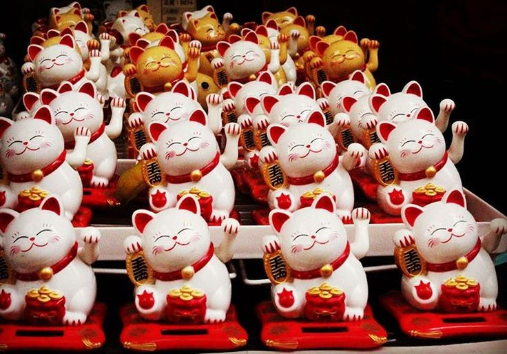 Feeling lucky today? Maneki-neko cats in a Singapore market. #luckycharms…