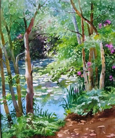 Knighton Woods