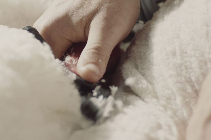 The wonderful fibre of Australian wool