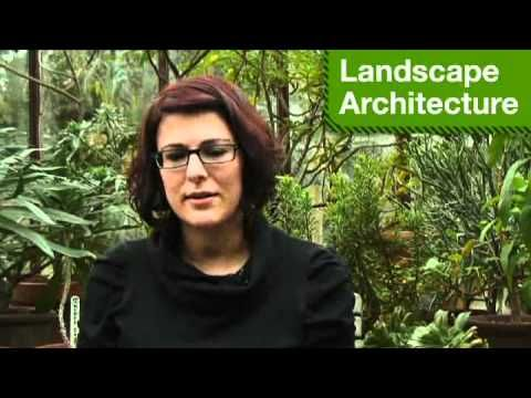 What about a career in landscape architecture?