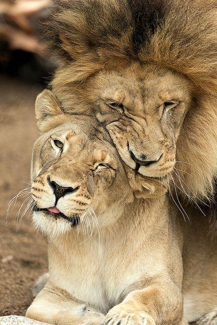 M'bari gives Etosha some love