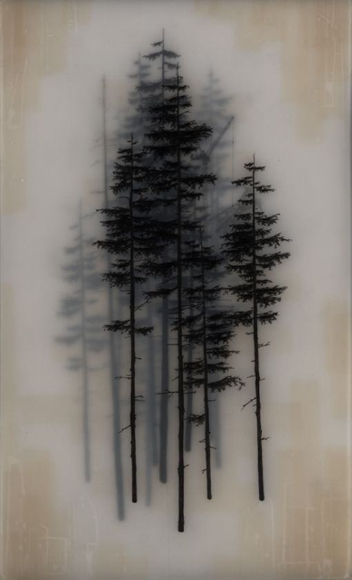 +  Brooks Salzwedel's drawings are hand drawn graphite on Duralar cast in layers of resin. Color in the pieces are made by layers of transparent tape.