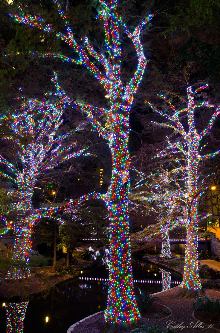Why do we decorate with christmas lights - National And Local Weather Radar Daily Forecast Hurricane And Information From The Weather Channel And Weather Com