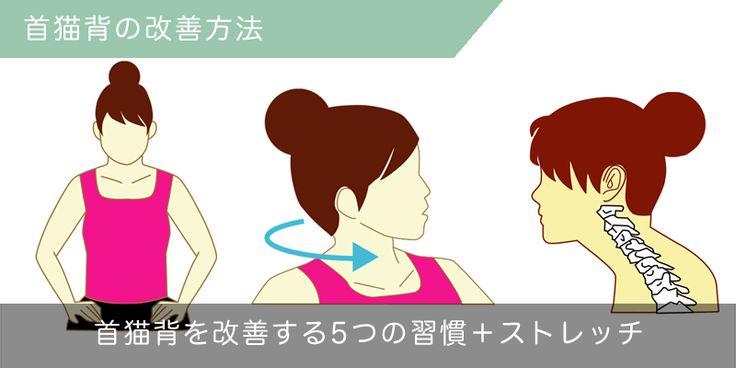 首が前に出てしまう原因ってなに?首猫背の原因と矯正に役立つ生活習慣の変え方をご紹介!首猫背は別名IT猫背とも呼ばれ、パソコンなどを長時間使うデスクワークの多い方によく見られる症状です。