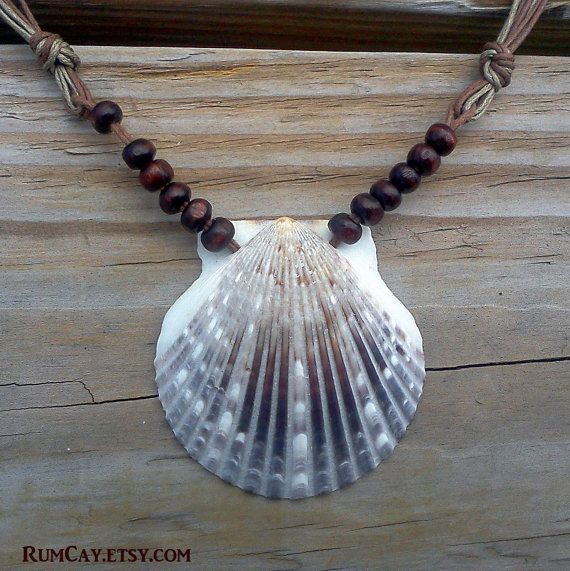 Brown Scallop Seashell Necklace on brown cotton string -  Surf, beach,  SUP style jewelry.