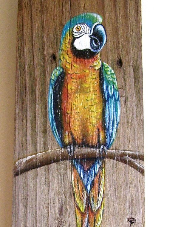 Parrot Plaque Hand Painted on Reclaimed Fence by roseartworks