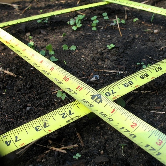 If you're new to gardening, square foot gardening could be the ideal system …