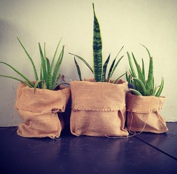 The Design Chaser: Interior Styling | Plant Storage Ideas Going to pop christmas tree into some coffee sacks