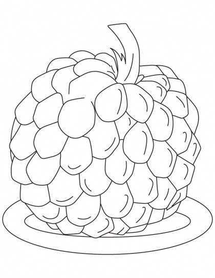 Sugar Apple Coloring Pages