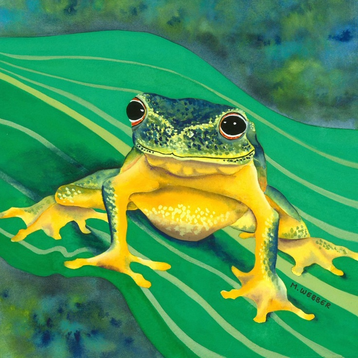 Tree Frog - Green and Yellow