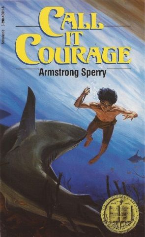 Call it Courage Novel Study and Teaching Resources