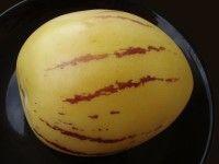 Solanum muricatum  Pepino  Solanum muricatum of meloenpeer is een kleine struik die eetbare vruchten produceert.  Hij behoort tot de nachtschadefamilie zoals aardappelen en tomaten.  De groei is sterk. Hij kan zowel in pot als in volle grond worden gekweekt.  Hij is echter vrij......  Read More  Het bericht Solanum muricatum verscheen eerst op Jungle Tuin.