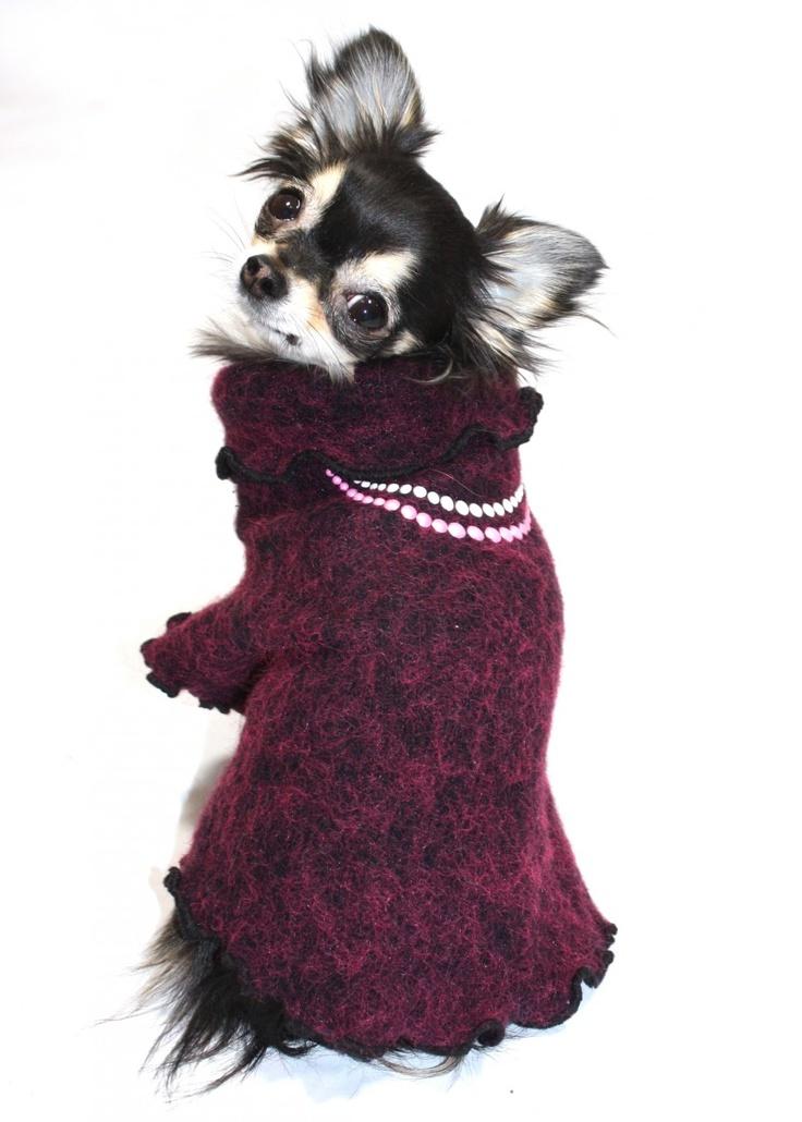 A Victorian dog sweater!    www.shilohsdogboutique.com