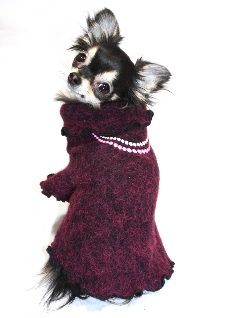 A Victorian dog sweater! www.shilohsdogboutique.com