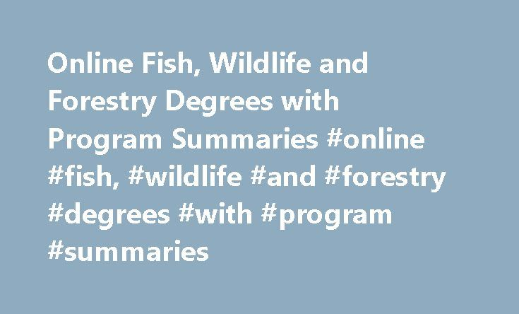 Online Fish, Wildlife and Forestry Degrees with Program Summaries #online #fish, #wildlife #and #forestry #degrees #with #program #summaries http://malawi.remmont.com/online-fish-wildlife-and-forestry-degrees-with-program-summaries-online-fish-wildlife-and-forestry-degrees-with-program-summaries/  # Online Fish, Wildlife and Forestry Degrees with Program Summaries Essential Information Bachelor's degrees in fish, wildlife and forestry cover conservation, ecology and wildlife law, providing…