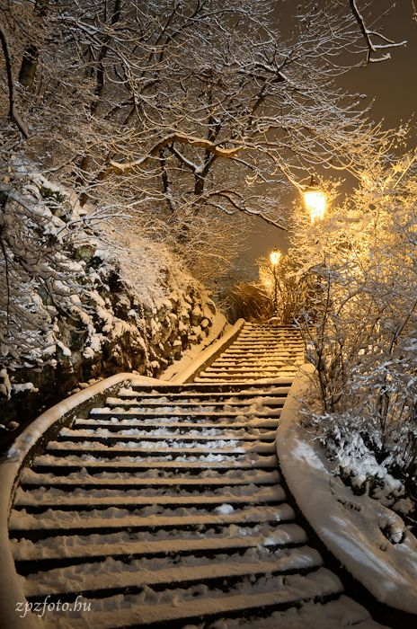 Winter Walk, Gellert Hill, Budapest, Hungary: