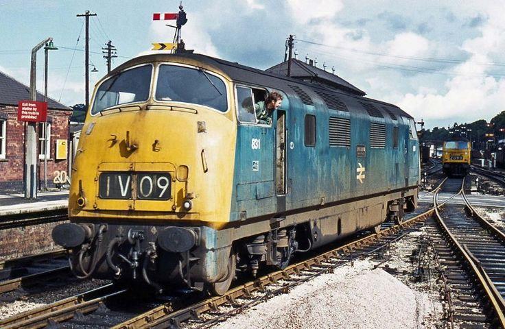 Railway Herald :: Imaging Centre :: 831 at Exeter St Davids