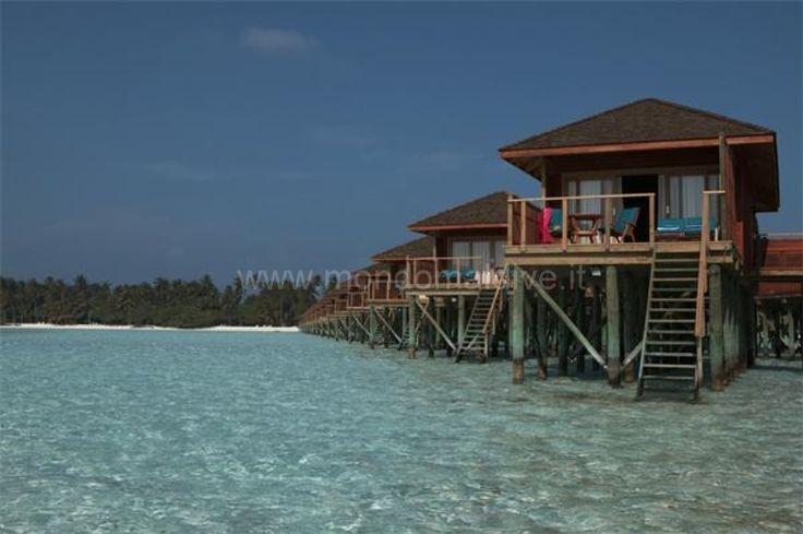 Vilamendhoo Maldive 034