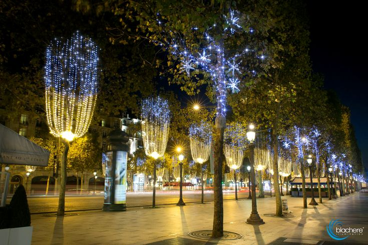 Illuminations 2014 Champs-Elysées Paris - Christmas lighting  - Blachere-Illumination_champs-Elysees-Paris-2014-scintillance
