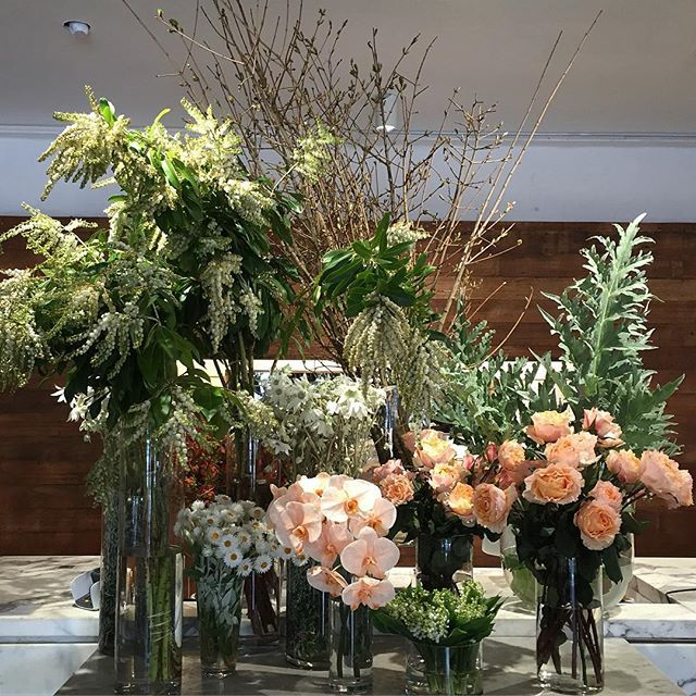 Peachy silver tones are displayed in the store today, come in and visit and enjoy the perfume! #lotsofflowers #peachy #foliage #roses #orchids #everlasting #flowersvasette #floristofinstagram