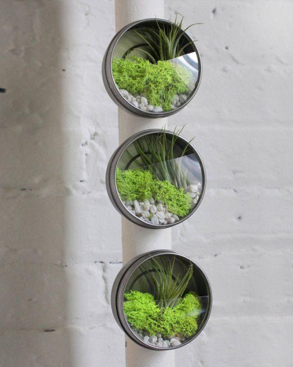 Vingle - 집안에 미니 정원 만들기 - 집 속의 정원 : 그린 인테리어