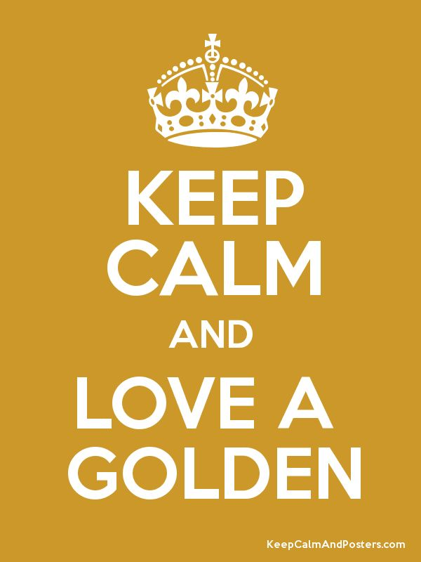 Keep Calm and Love A Golden poster