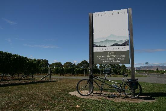 Bike to Wine, Marlborough