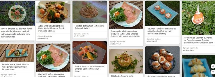 20 Recettes de Saumon Fumé - Art de Vivre 20 ways to prepare Smoked Salmon