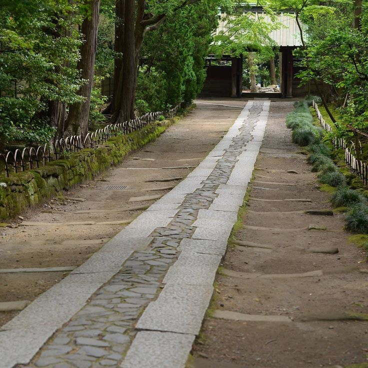 鎌倉、寿福寺( ̄人 ̄) Gartenweg, Garten